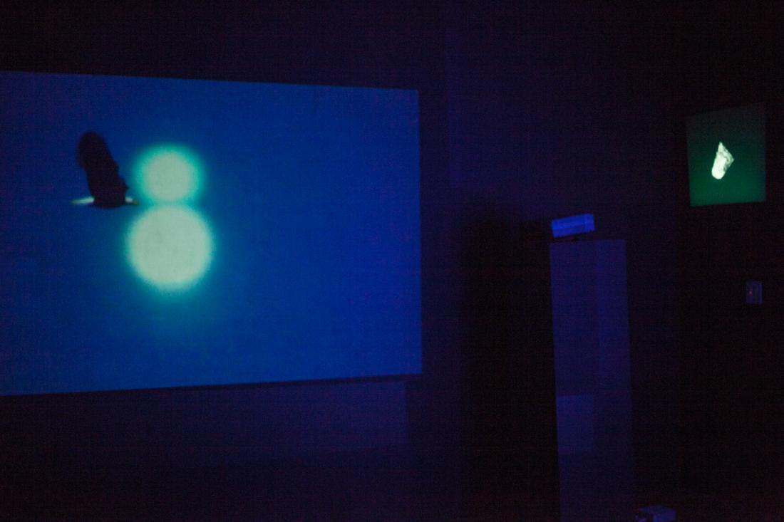 Installation view of Bridget De Gersigny's ICP-Bard MFA 2013 thesis solo exhibition
