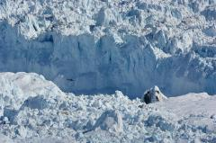 James Balog, Chasing Ice, 2012. Video. © 2016 Chasing Inc., LLC